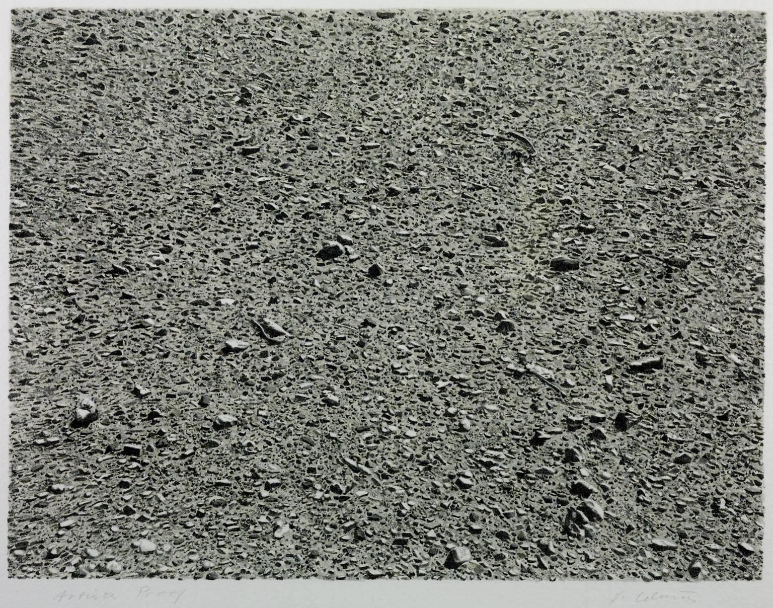 비야 셀민스(Vija Celmins), , 1975. 종이에 석판. 315 x 416 mm. Copyright: Vija Celmins